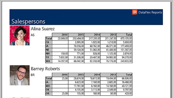Salespersons Volume in DataFlex Reports
