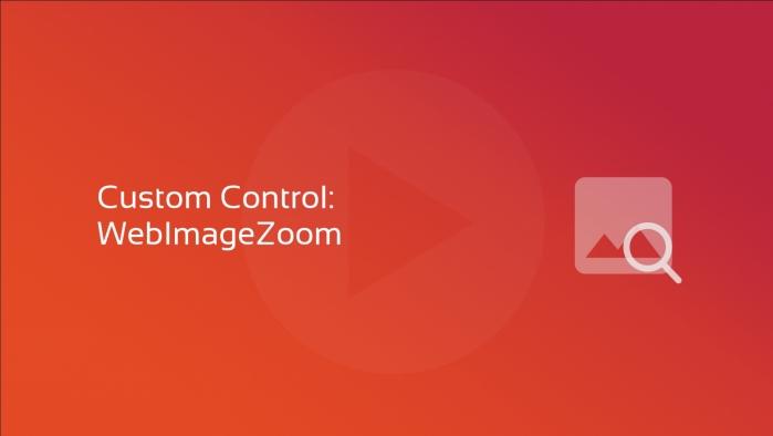 Custom Control - WebImageZoom