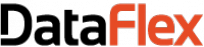 DataFlex Application Development Software